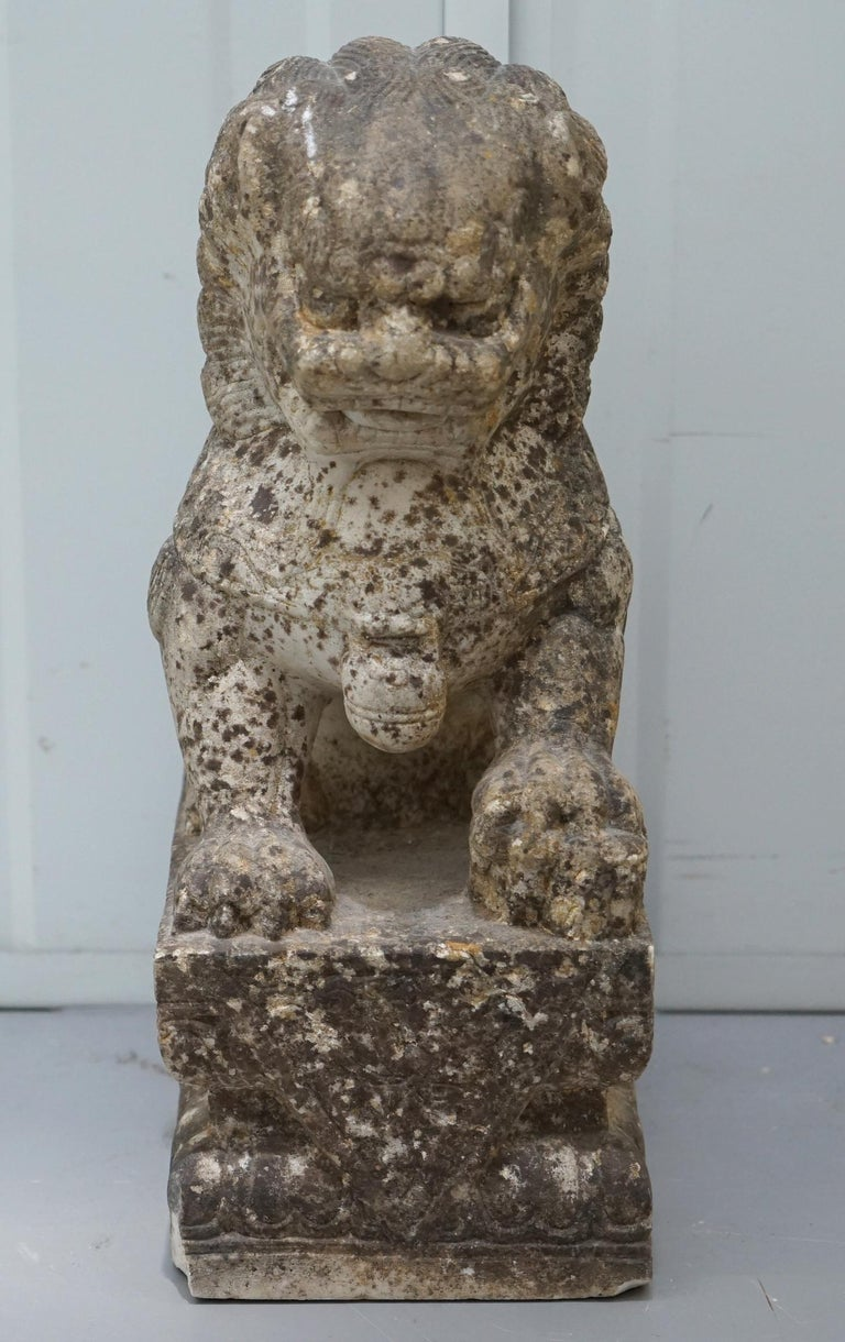 Very Rare Pair of 18th Century Chinese Marble Temple Lion Guardians Foo Dogs For Sale 15