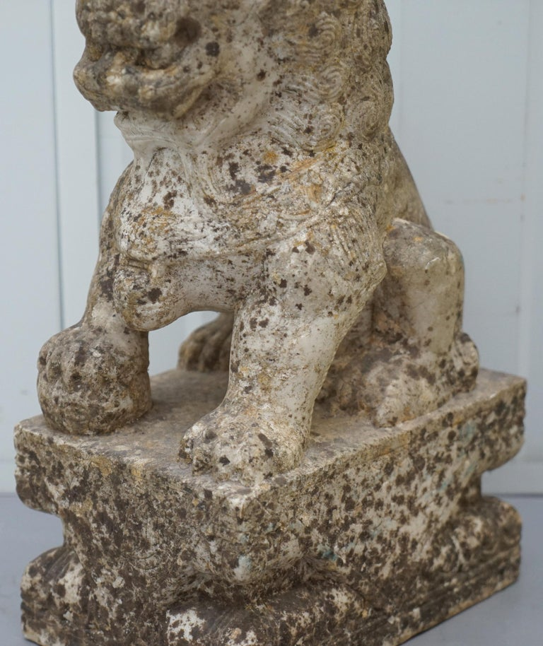 Very Rare Pair of 18th Century Chinese Marble Temple Lion Guardians Foo Dogs For Sale 3