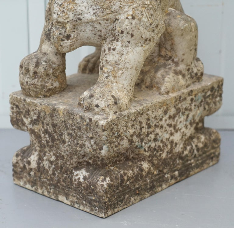 Very Rare Pair of 18th Century Chinese Marble Temple Lion Guardians Foo Dogs For Sale 4
