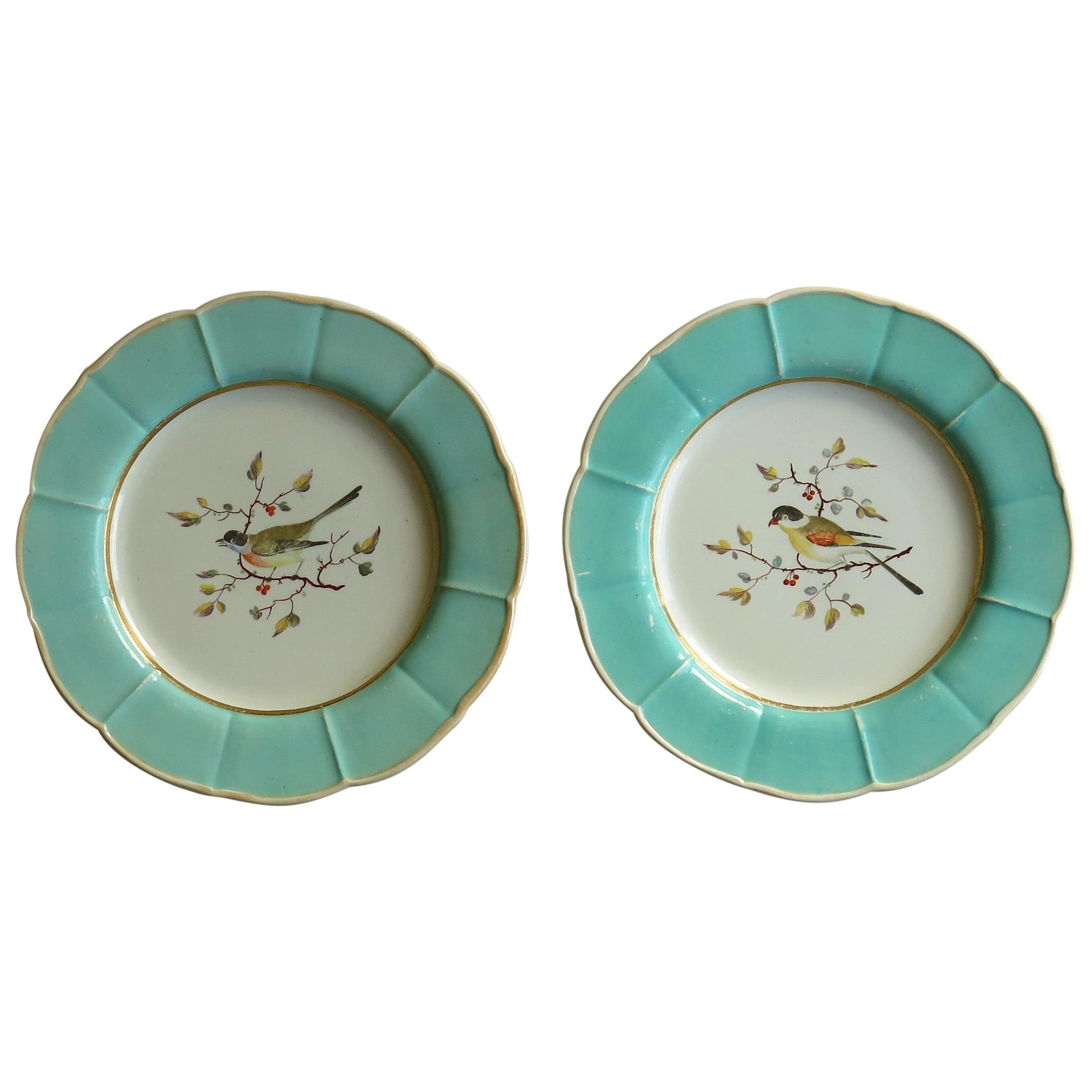 Very Rare Pair of Mason's Ironstone Dinner Plates Hand Painted Birds, circa 1818