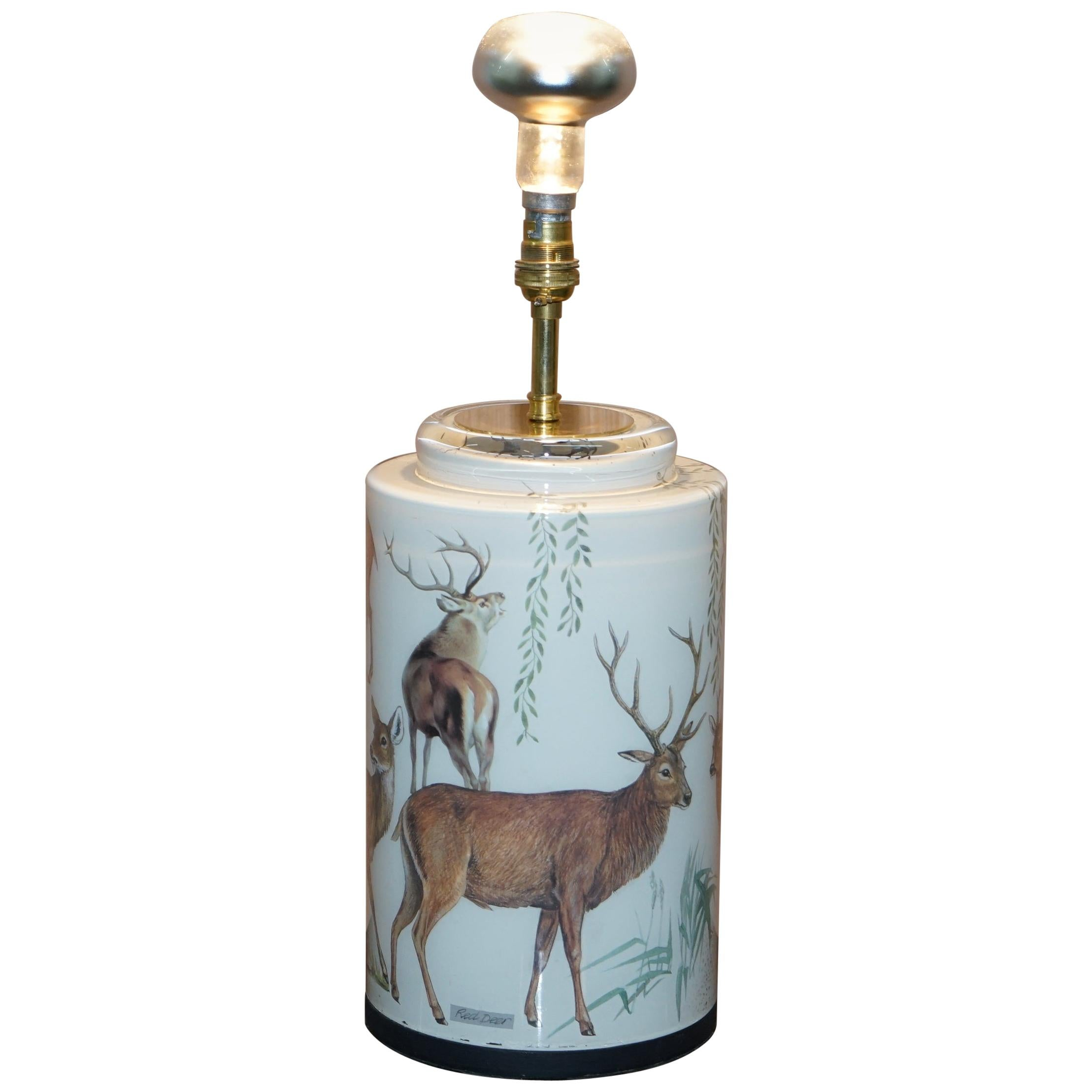 Very Rare Potichomania Studies Lamp Illustrated by Diana Mayo of Deer Stages Etc