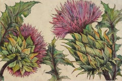 Cardoon, still life, nature, flower, limited edition print
