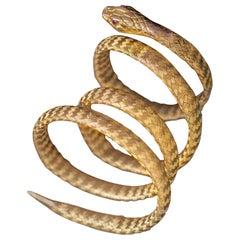 Victorian 18 Karat Yellow Gold and Ruby Snake Bangle