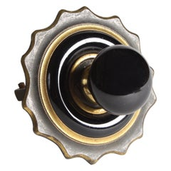 Victorian Black Porcelain and Brass Door Bell Pull