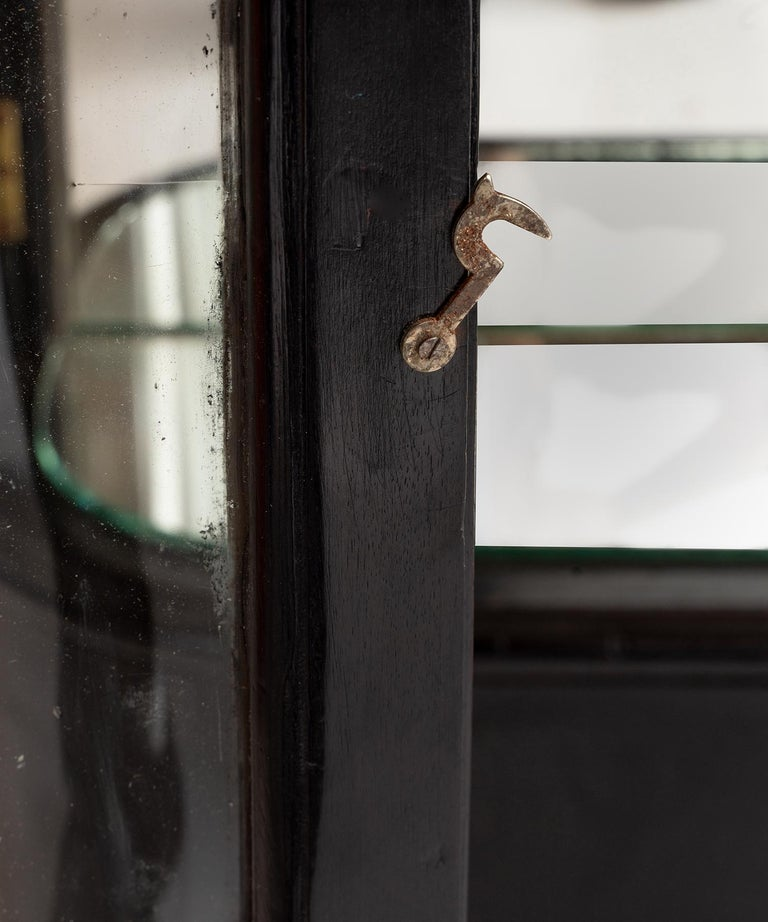 Ebonized Victorian Display Case For Sale