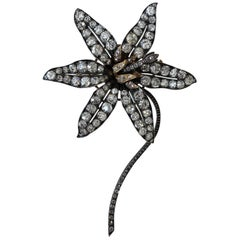 Victorian En Tremblant Flower Brooch with 20 Carat of Diamonds in Fitted Box