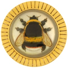 Victorian Essex Reverse Carved Rock Crystal Bumblebee Pin