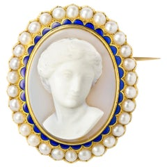 Victorian Hardstone Cameo Brooch Pendant