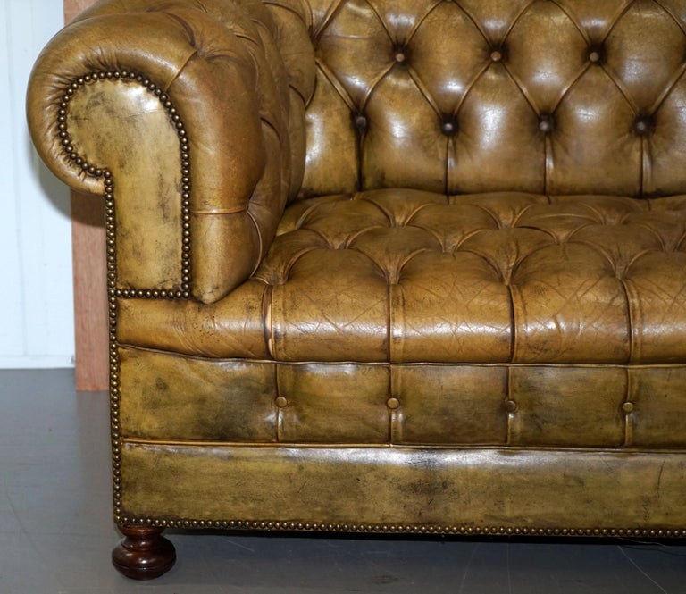 Victorian Horse Hair Green Hand Dyed Leather Chesterfield Fully Button Base Sofa For Sale 5