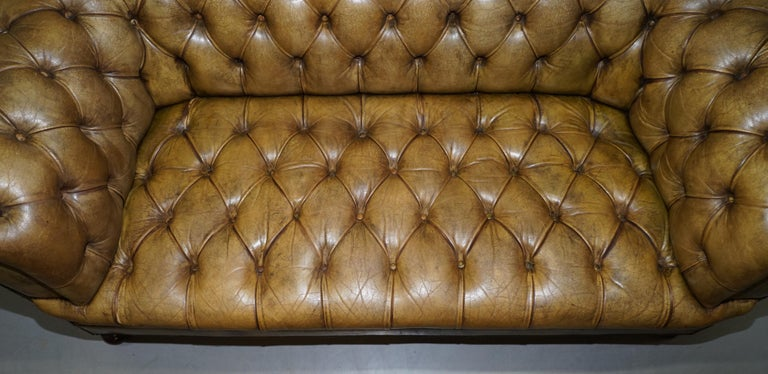 Victorian Horse Hair Green Hand Dyed Leather Chesterfield Fully Button Base Sofa For Sale 1