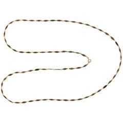Victorian Plique-à-Jour Enamel and Gold Long Link Chain Necklace
