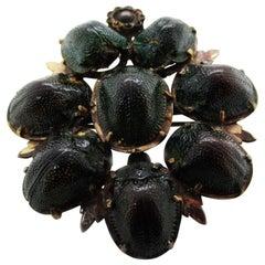 Victorian Real Tortoise Beetle Shell Pin Pendant