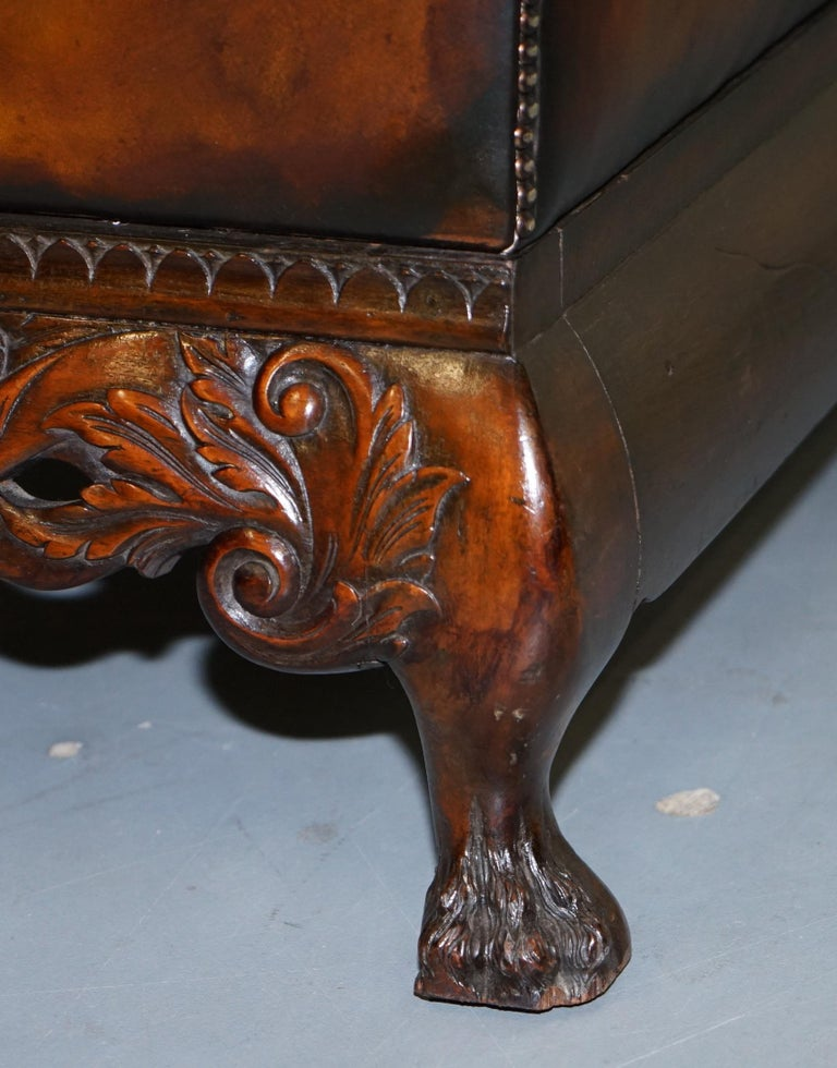 Victorian Restored Chesterfield Hand Dyed Brown Leather Sofa Lion Hairy Paw Feet 12