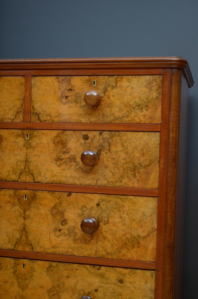 Victorian Walnut Chest of Drawers For Sale 1