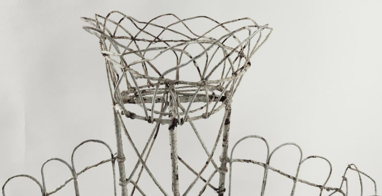Victorian Wire Plant Stand For Sale 1