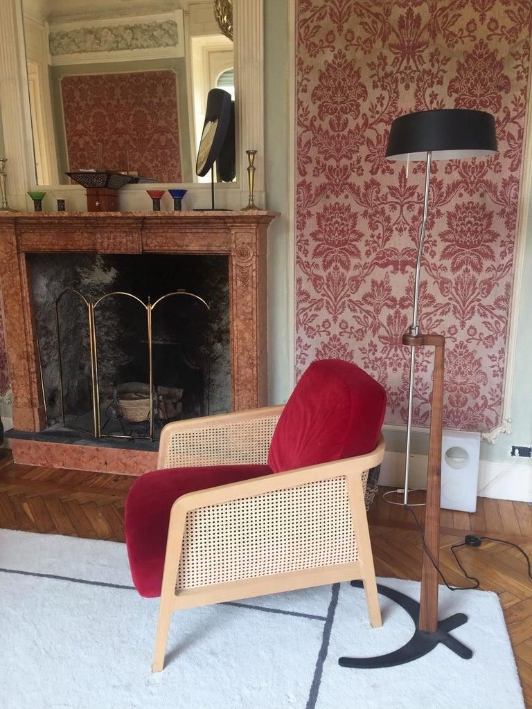 Italian Vienna Lounge Armchair by Colé, Beechwood, Blue Cushions Contemporary Design For Sale