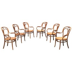 Viennese Early 20th Century Set of Thonet Chairs in Solid Wood, 1900s