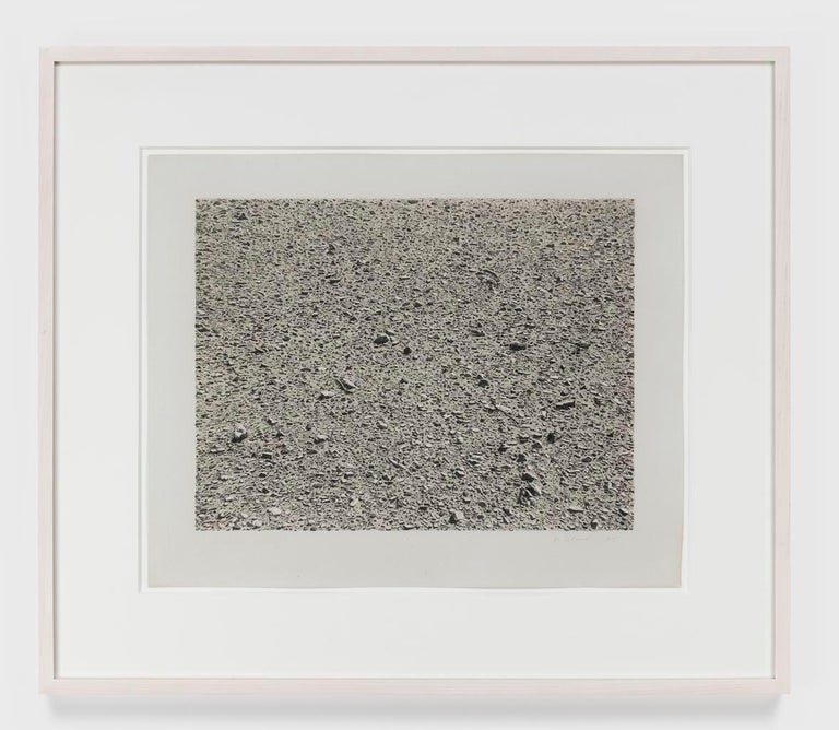 Vija Celmins Landscape Print - Untitled (Desert)