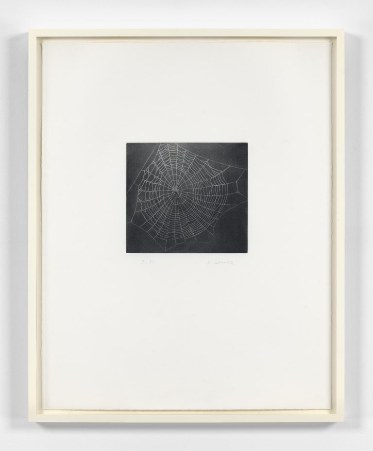 Untitled (Web I) For Sale 1