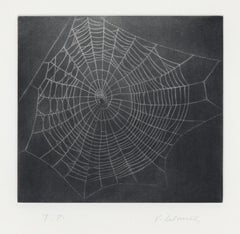 Untitled (Web I)
