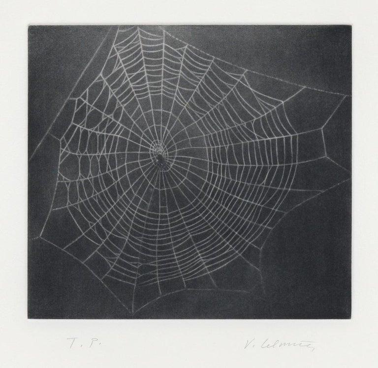 Untitled (Web I) - Print by Vija Celmins