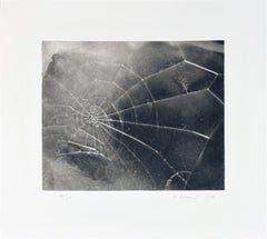 "Vija Celmins-Spider Web-17.5"" x 19""-Serigraph-2009-Contemporary-Black & White"