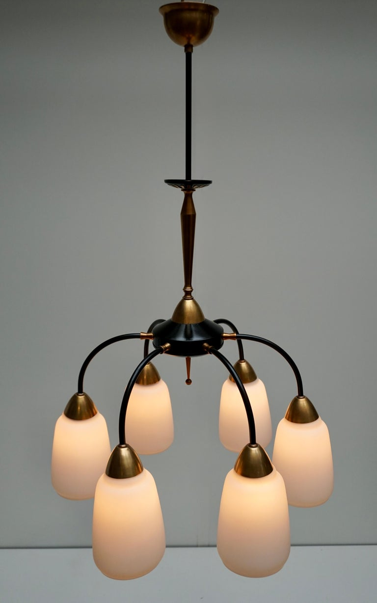 This vintage 1950s Italian chandelier has six arms and lights and is made of brass and black metal with hand blown shades. Measures: Height 70 cm. Diameter 70 cm.