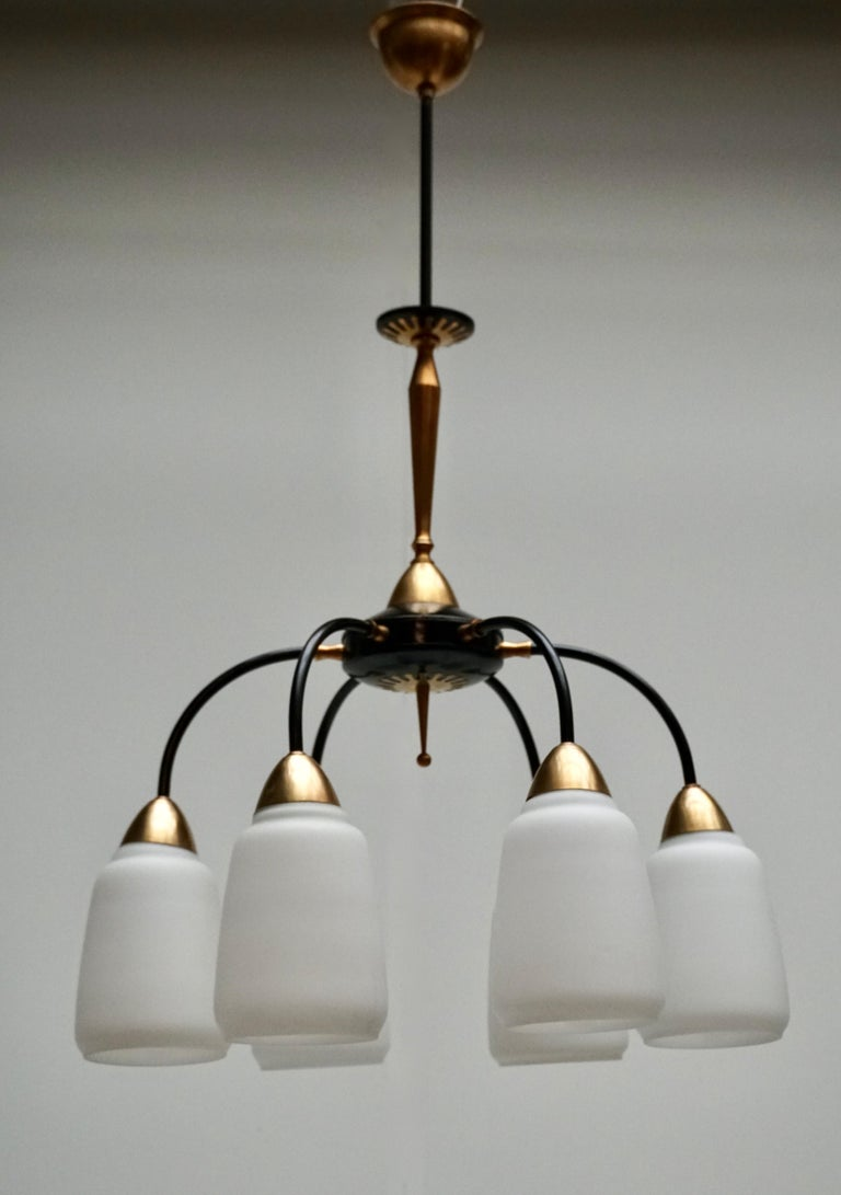 20th Century Vintage 1950s Italian Brass and Glass Chandelier For Sale