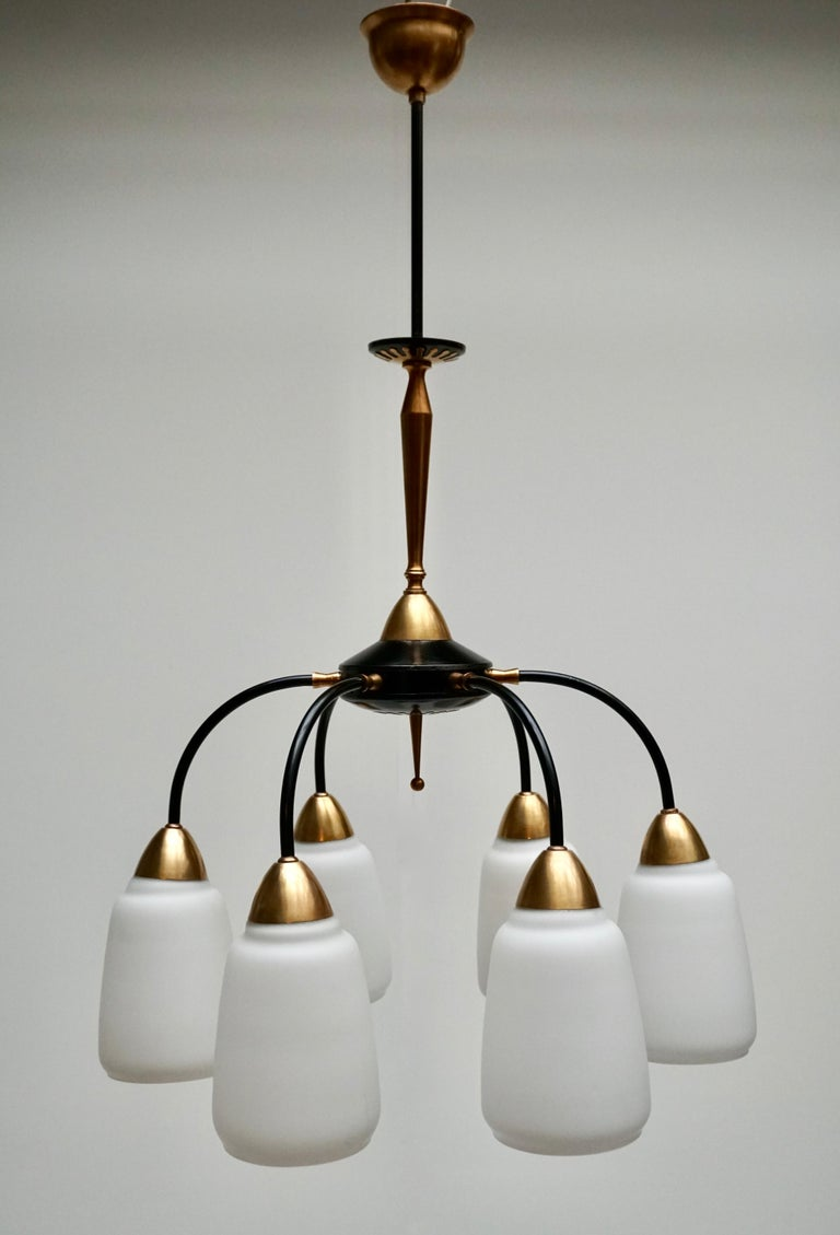 Vintage 1950s Italian Brass and Glass Chandelier For Sale 2