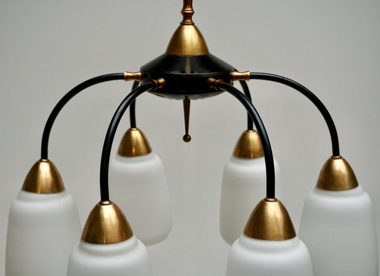 Vintage 1950s Italian Brass and Glass Chandelier For Sale 3