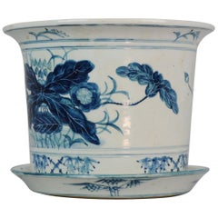 20th Century Chinese Porcelain Jardiniere or Planter for Flower Cabbage Leaf
