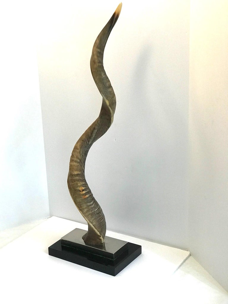 Lacquered Vintage African Kudu Horn Sculpture on Stand For Sale