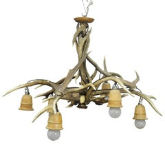 Vintage Antler Chandelier with Six Spouts, circa 1950s