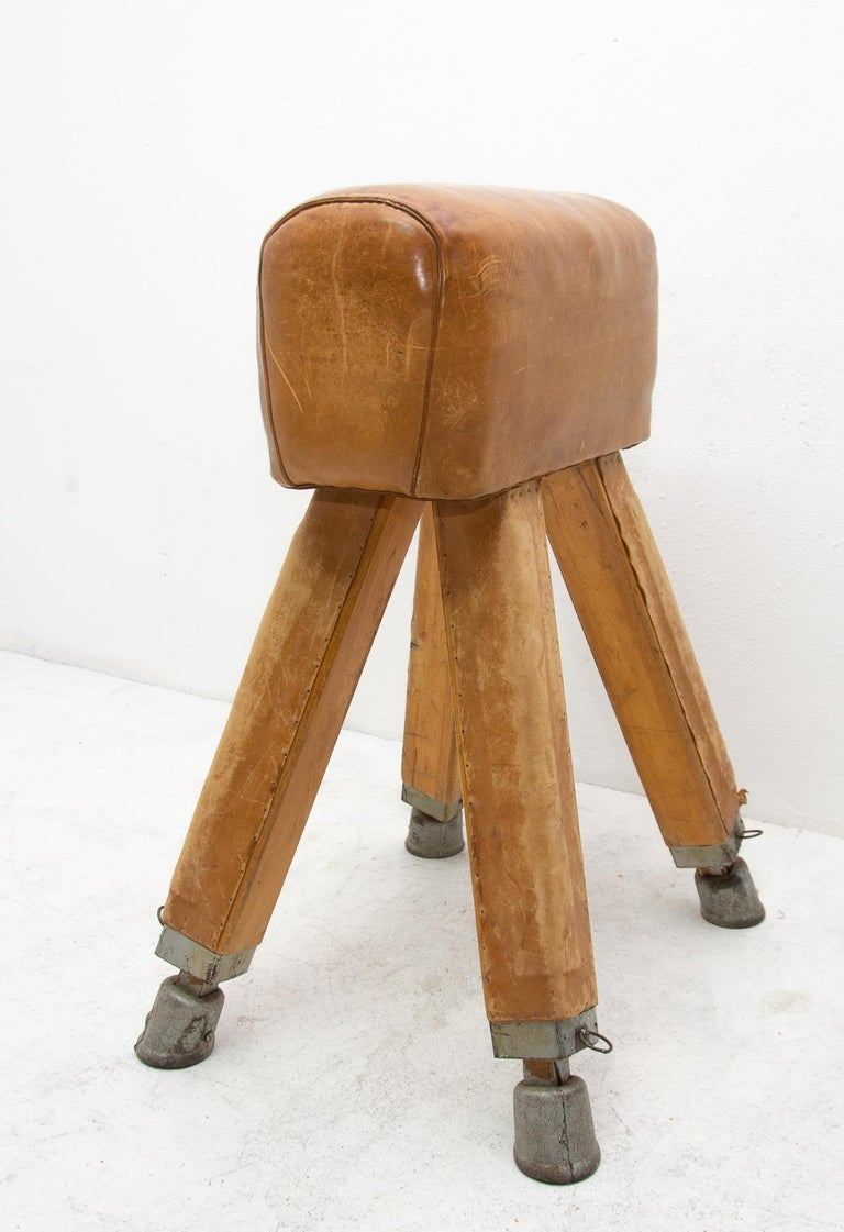 Vintage Beech, Metal and Leather Gym Pommel Horse, 1930s For Sale 4