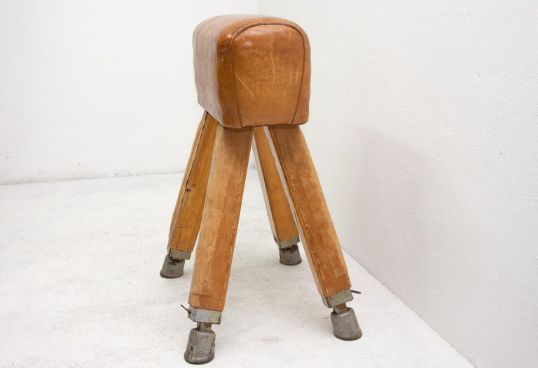 Vintage Beech, Metal and Leather Gym Pommel Horse, 1930s In Fair Condition For Sale In Prague 8, CZ