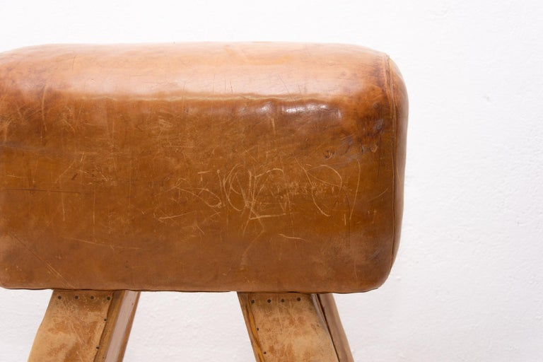 Cowhide Vintage Beech, Metal and Leather Gym Pommel Horse, 1930s For Sale
