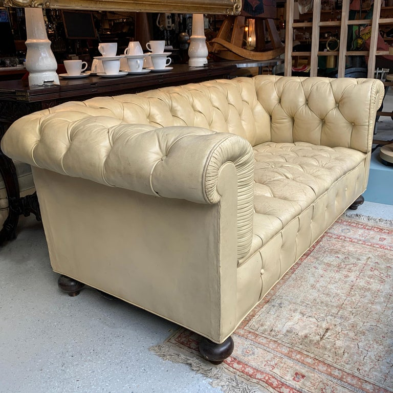 Nicely weathered, vintage, fully tufted, ecru, beige leather, Chesterfield sofa with round maple feet.