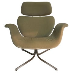 Vintage Big Tulip Armchair with Cross Base by Pierre Paulin for Artifort