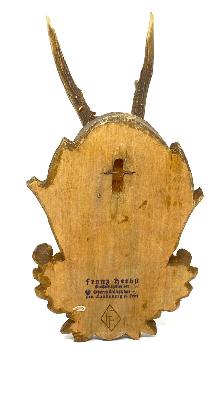Vintage Black Forest Deer Antler Trophy on Wood Carved Plaque, German, 1930s In Good Condition For Sale In Nürnberg, DE