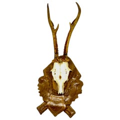 Vintage Black Forest Deer Antler Trophy on Wood Carved Plaque, German, 1960s
