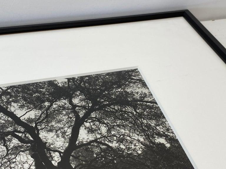 Paper Vintage Black & White Photograph