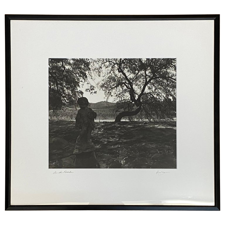 """Vintage Black & White Photograph """"In the Garden"""" Wine Country Scene For Sale"""