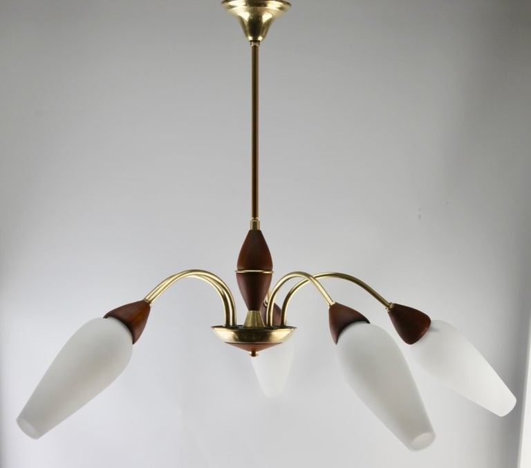 Vintage Chandelier Five Arms by Stilnovo, Italian, 1960s For Sale 6