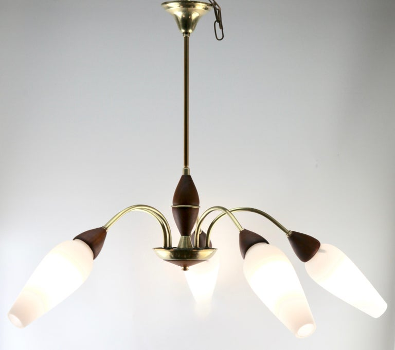 Vintage Chandelier Five Arms by Stilnovo, Italian, 1960s For Sale 10