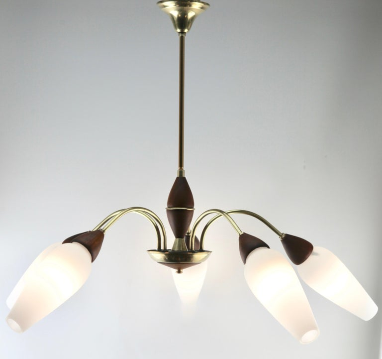 Mid-Century Modern Vintage Chandelier Five Arms by Stilnovo, Italian, 1960s For Sale