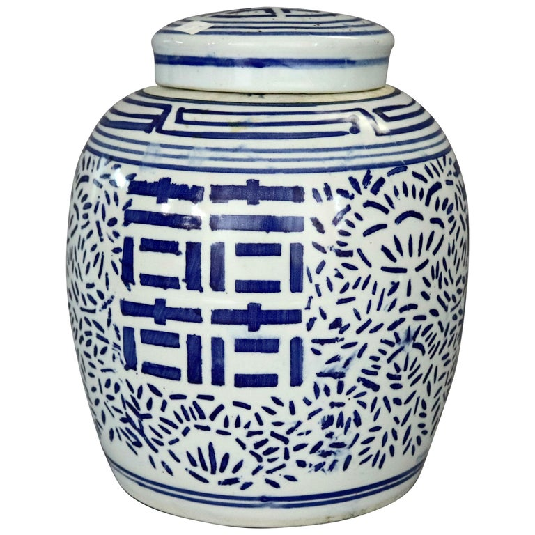 Vintage Chinese Blue and White Hand Decorated Porcelain Ginger Jar, 20th Century For Sale