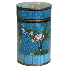 Vintage Chinese Cloisonné Box, Early 20th Century