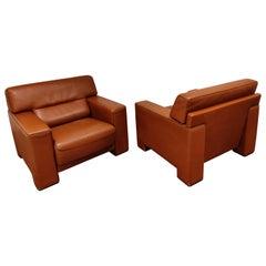 Vintage Cognac Leather Armchairs by De Sede, 1980s