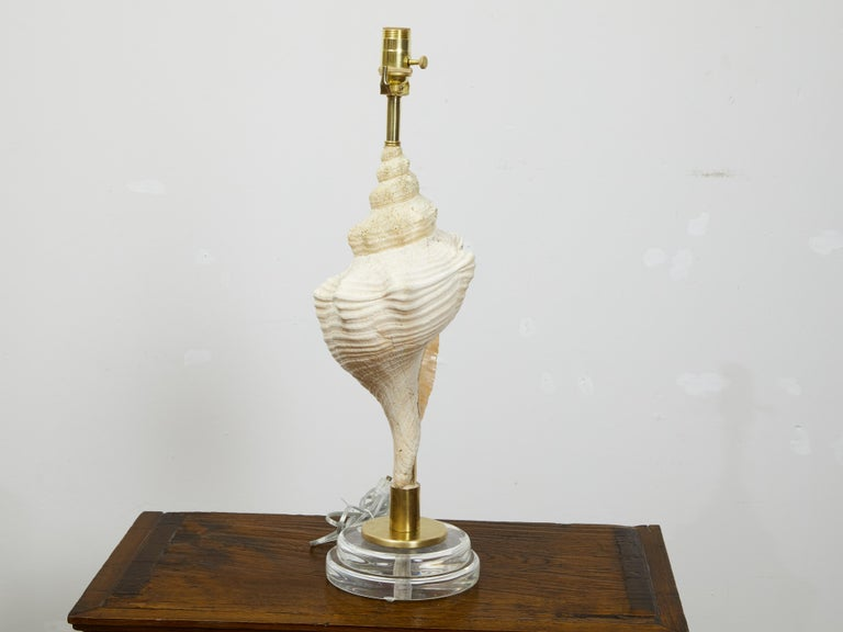 20th Century Vintage Conch Shell Table Lamp from the Midcentury Mounted on Round Lucite Base For Sale