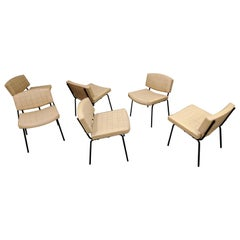 Vintage Conseil Chairs by Pierre Guariche 1950s, France